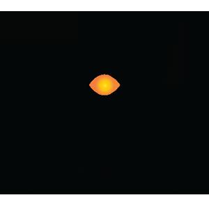 Sdwan Enterprise icon